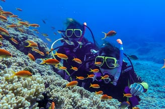 小琉球深潛體驗,自由潛水,浮潛你不可不知道的事