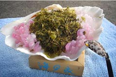 海之家貝殼海藻冰